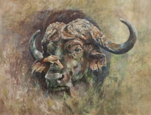 Acrylic Painting of a Cape buffalo with an Ox Pecker on his nose