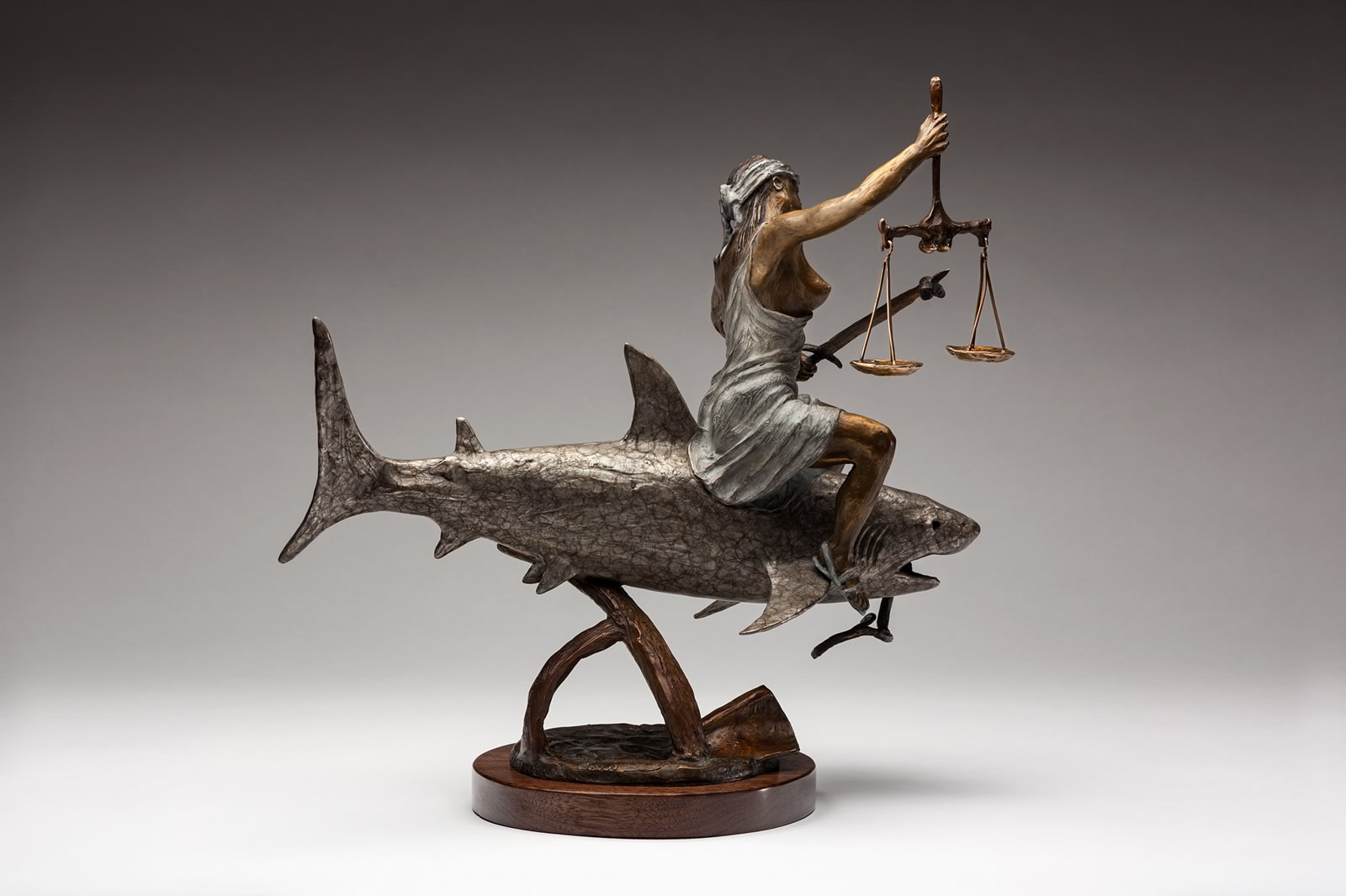 Lady Justice view 2