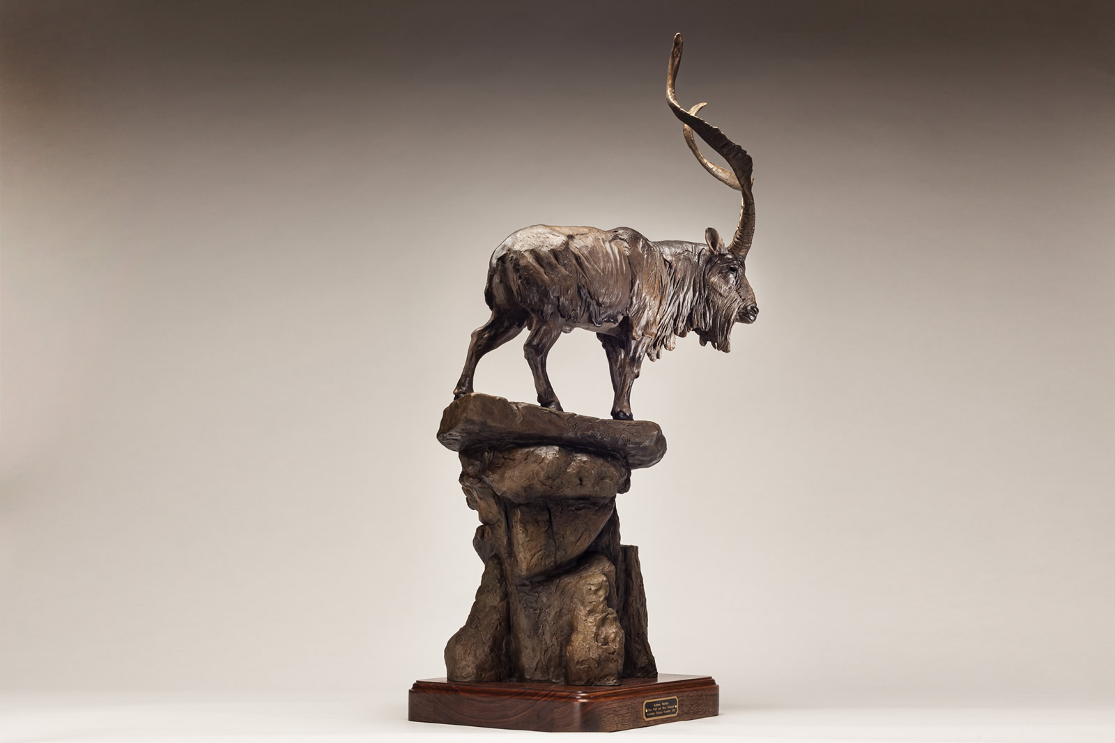 Markhor view 3